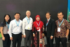 第二届中国医疗健康(印尼)品牌展_2